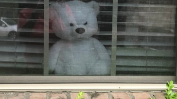 Neighborhood 'bear hunts' are an adorable cure for kids' social-distancing boredom