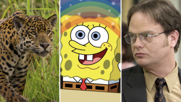 22 background noise shows to stream while you're social distancing